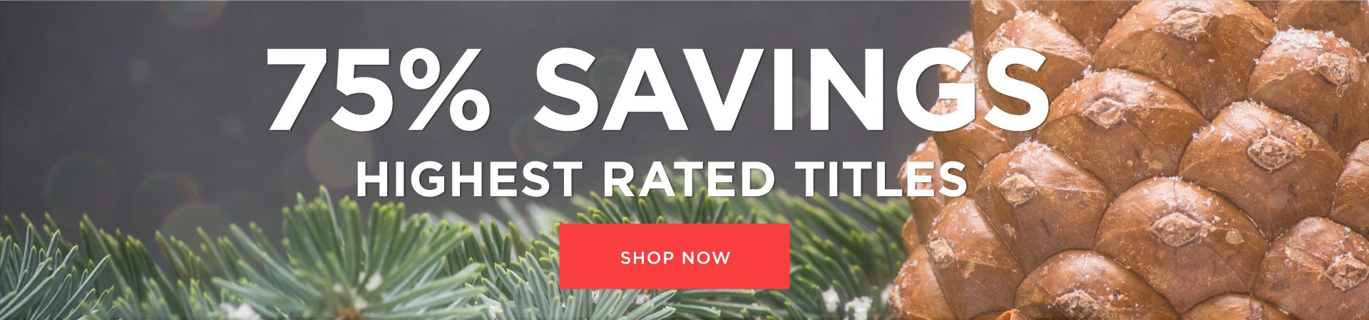 2016 Highest Rated Holiday Super Sale