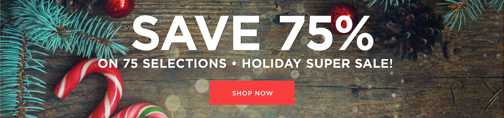 2016 Holiday Super Sale
