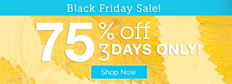 Black Friday Sale: 75% Off - 3 Days Only!