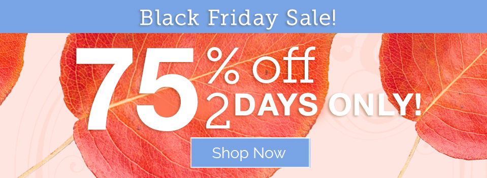 Black Friday Sale: 75% Off - 2 Days Only!