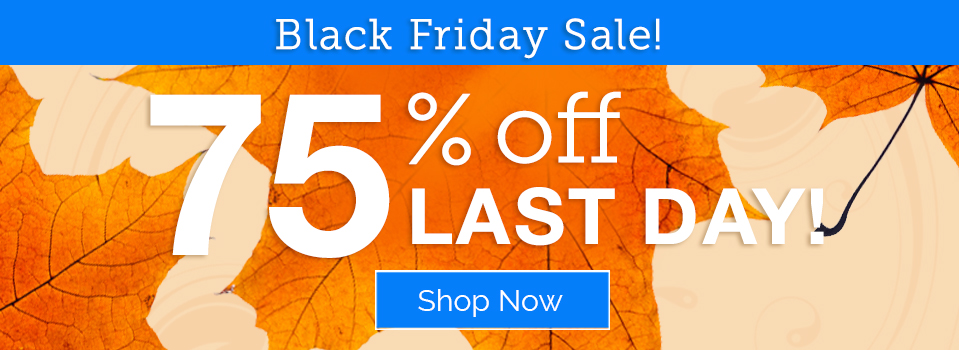 Black Friday Sale: 75% Off - Last Day!