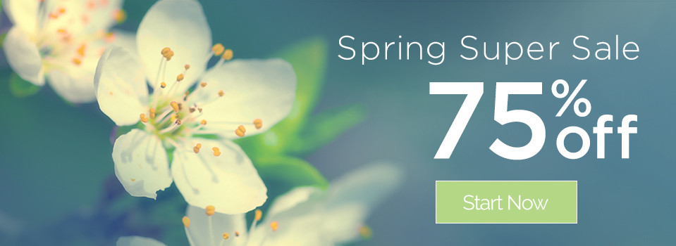 Spring Super Sale - 75% Off