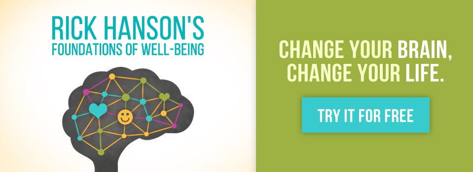 Rick Hanson's Foundations of Well-Being